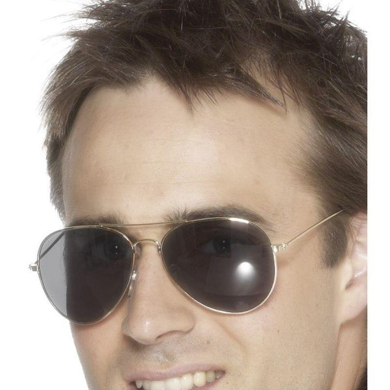 Aviator Specs Adult Silver - Land Sea & Air Forces Mad Fancy Dress