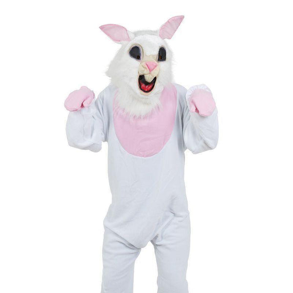 World Book day-Easter-Unisex-Brer-Ben Rabbit THE HARE Costume All Ages//Sizes