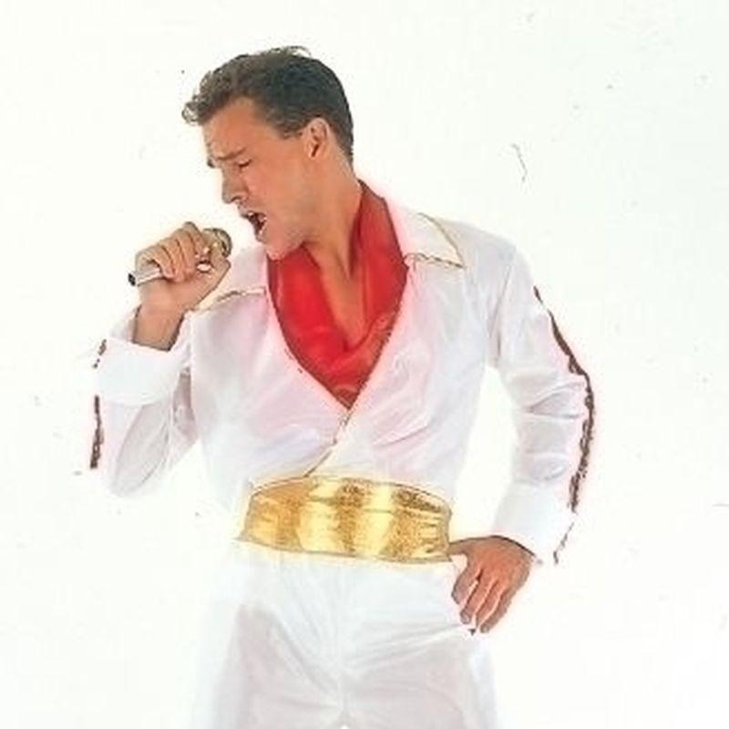 Mens Rock Star/elvis Adult Adult Costume Male One Size Halloween Costume - Generic Mens Costumes Mad Fancy Dress