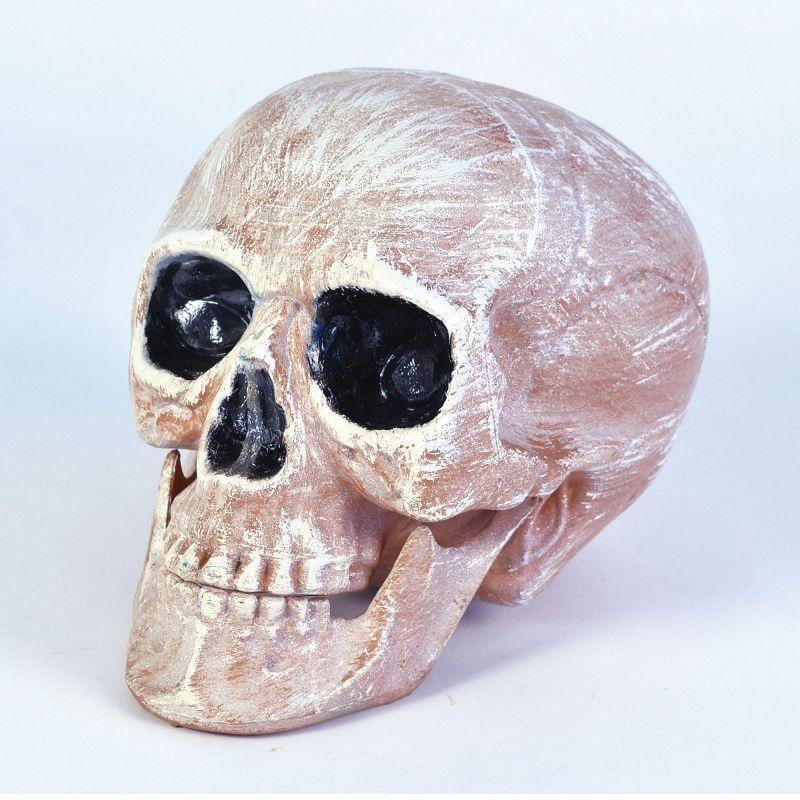 Skull Head Realistic |Halloween Items| Unisex One Size - Halloween Costumes And Accessories Mad Fancy Dress