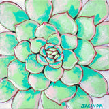 "Original Painting - Succulent on White - Acrylic in 8""x8"" Canvas"