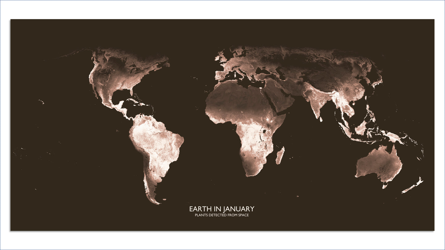 Earthscape Map: Plants Detected From Space