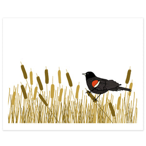 A print of a hand-drawn illustration of red-winged blackbird resting amongst a swath of cattails. Shown on a white background.