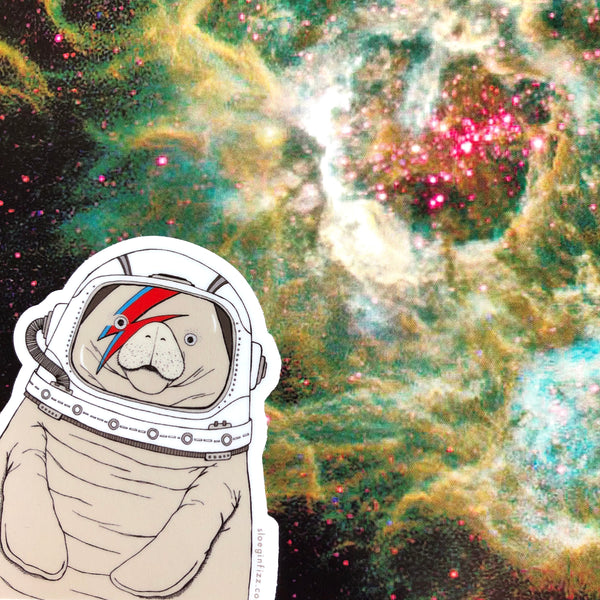 Space Manatee Vinyl Sticker