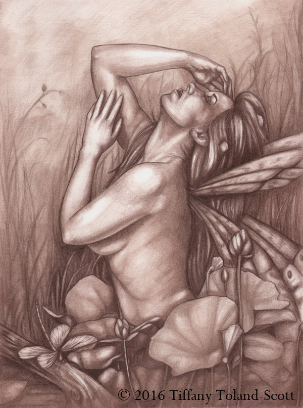 Emergence - Pencil