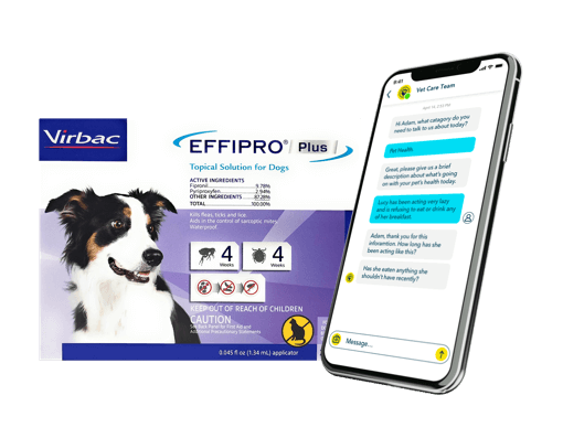Meds to Keep Fleas Away + Telehealth 3 Month Bundle