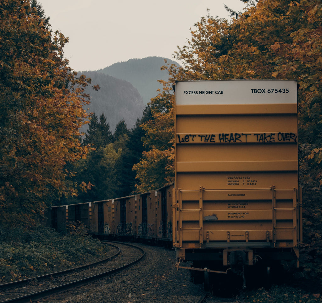 Yellow railway car disappearing around a bend on a railway shrouded by autumn trees of gold and red. Let the heart take over is grafittied on the retreating car