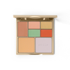 correct & perfect all-in-one color correcting palette