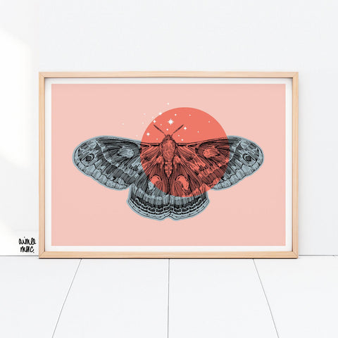 Starry Cecropia Moth Print - A4 - Loola Loves UK