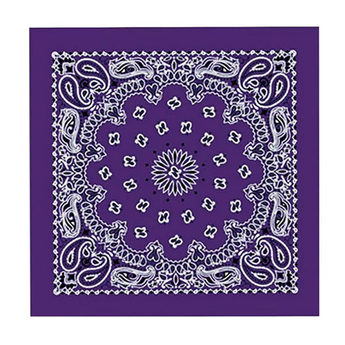 Hot Leathers BAP1002 Classic Purple Paisley Bandana