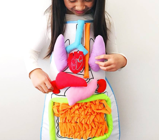 Anatomy Apron Educational Toy
