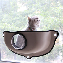 Cat Hammock Window Perch With Transparent Cover