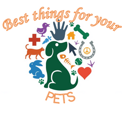 Best Things for Your Pets