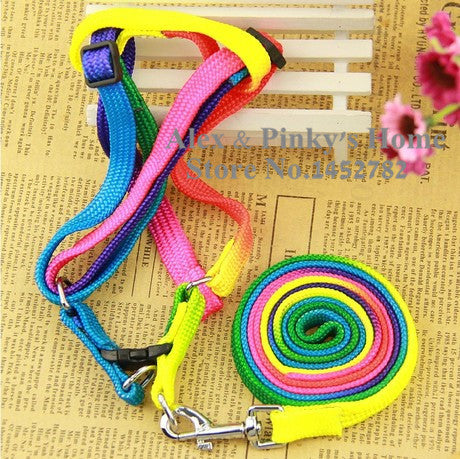 Rainbow Colorful Style Pet Harness /Leashes For Dogs Collar