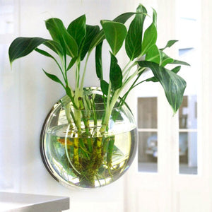 Pot Plant Wall Mounted Hanging Aquarium Transparent Acrylic Fish Bowl Fish Tank Flower Plant Vase Home Decoration