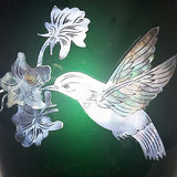 Hummingbird Mother of Pearl