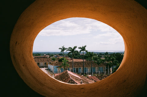 trinidad cuba view palm tree analogue film