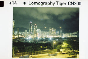 Lomography Tiger Color Negative 200 110 Film (24exp)-Film Bros