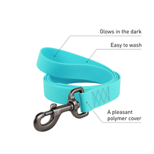 Mint Waterproof Leash