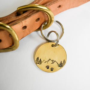 Dog Adventures Pet ID Tag