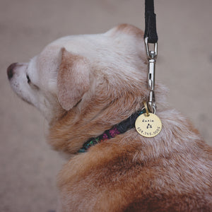 Small Custom Pet ID Tag | Hand Stamped Dog Tag