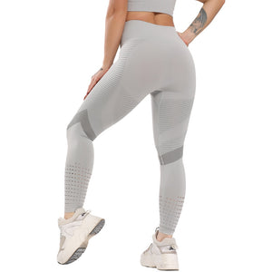 Seamless Striker Yoga Pants | BigGymStore.com - biggymstore