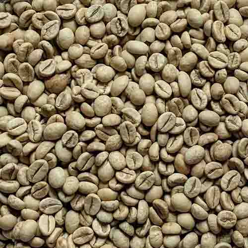 Josuma Monsooned Robusta (for espresso blends)