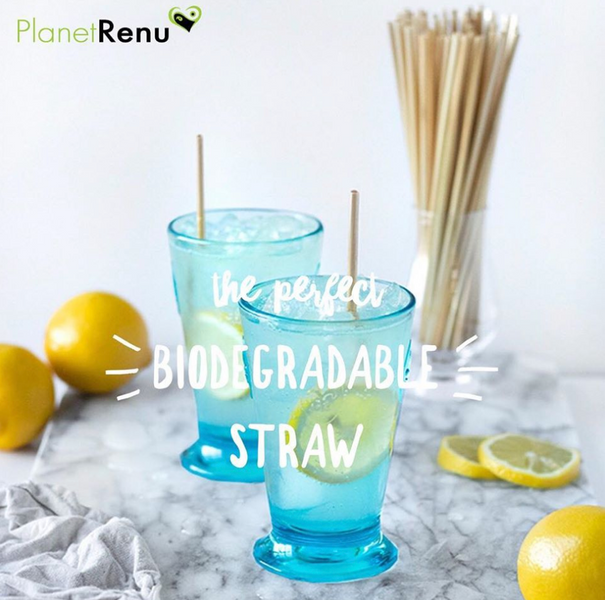 The Perfect Biodegradable Straw