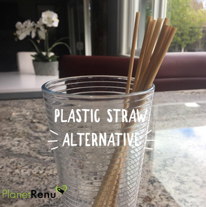 Ditch Plastic Straws Forever!