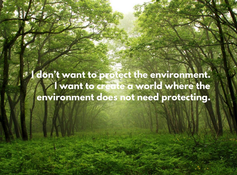What is our end goal with the environment?