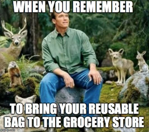 Bringing Your Reusable Bags to the Store :)