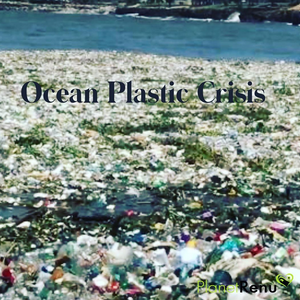 The Ocean Plastic Crisis