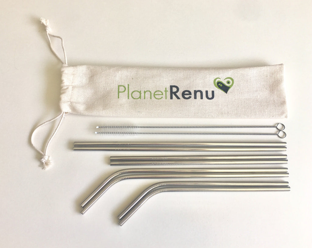 Stainless Steel Straws, Rainbow Stainless Steel Straws, Stainless Steel Straw Set, Planet Renu