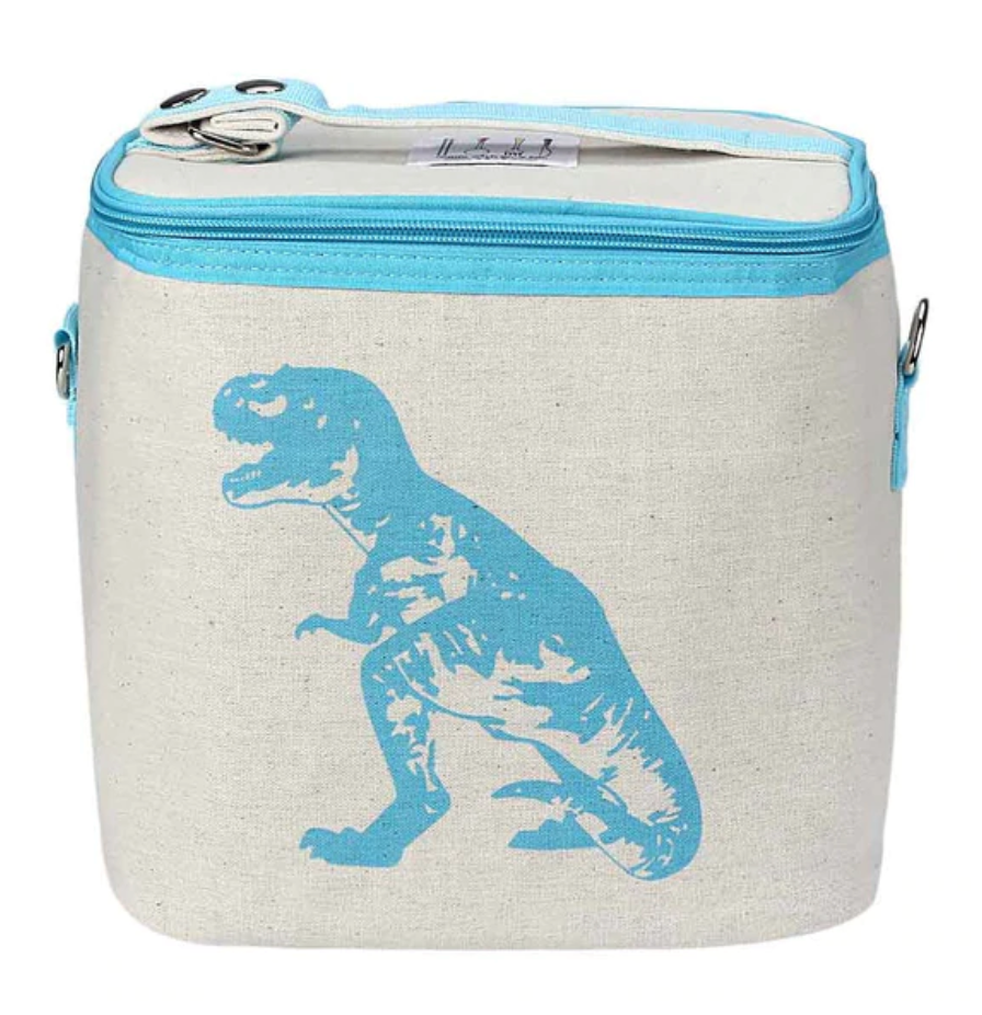 Insulated Lunch Box, Lunch Bag, Planet Renu