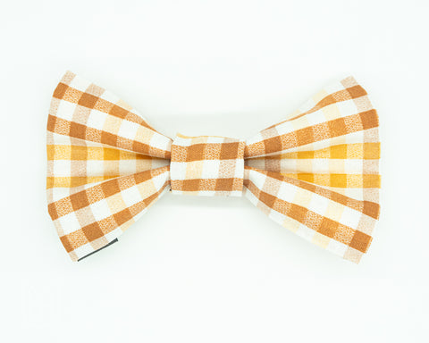 Orange gingham dog bow tie