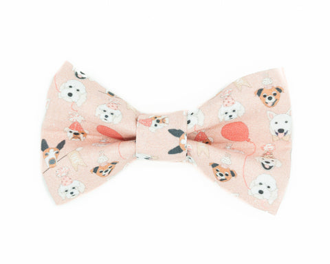 Pink birthday dog bow tie