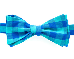 Bow Tie - Teal & Blue Check