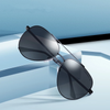 Men's Classic Aviator Sunglasses