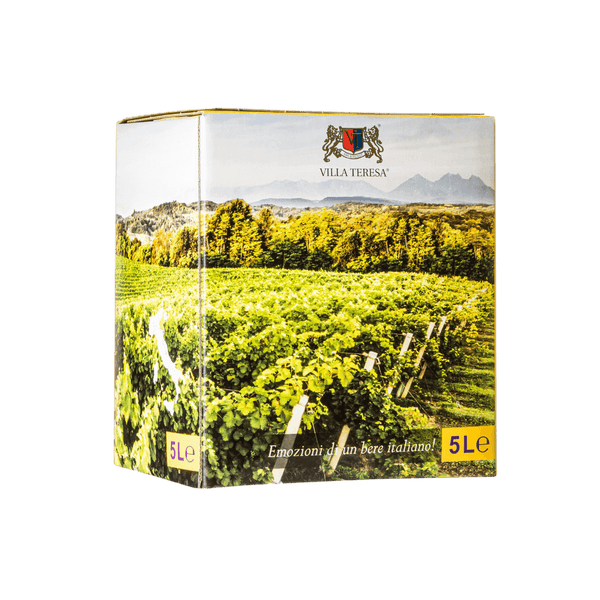 Chardonnay Villa Teresa Bag in Box 5 litrů
