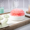 Spongelle Baltic Rose Diffuser | Floret Collection