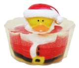 Santa Rubber Ducky Toy Soap