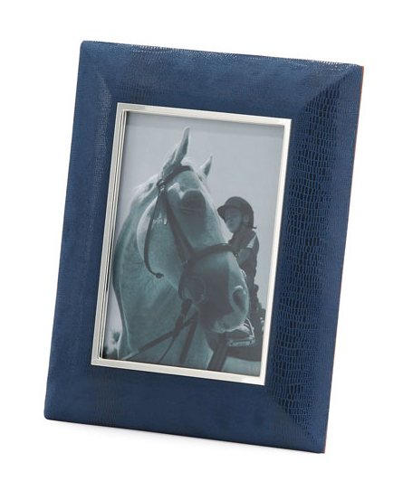 Blue Lizard Frame 5x7
