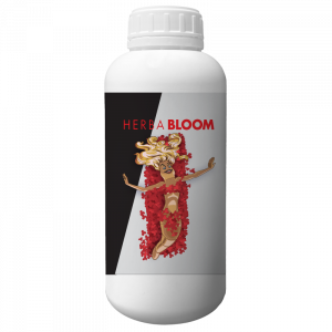 BLOOM - linea-herba -