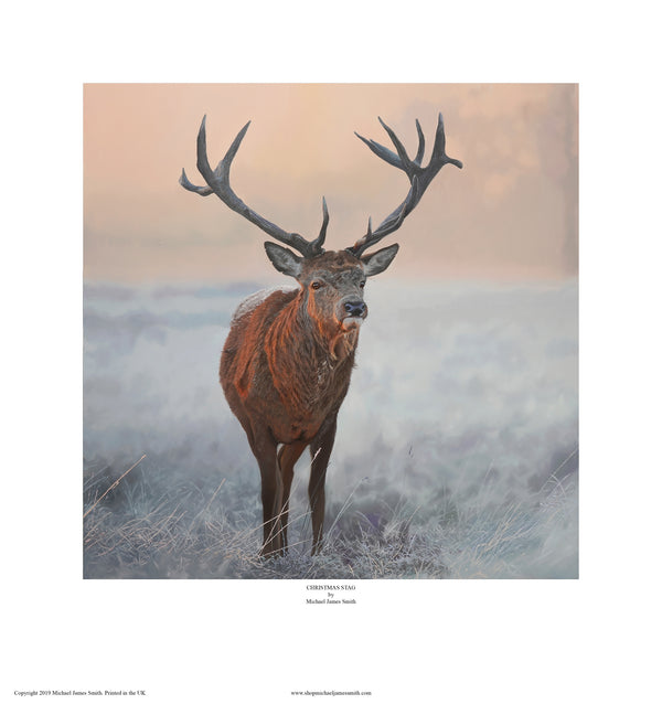 """Christmas Stag"" Open edition print"