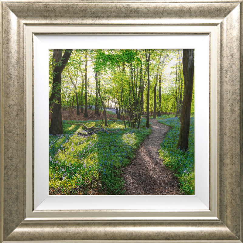 Blakes Wood | Original Oil Painting
