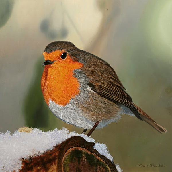 WINTER ROBIN | ORIGINAL OIL PAINTING