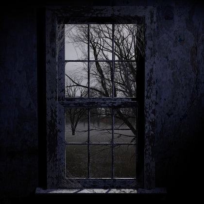 The Window - Digital Download