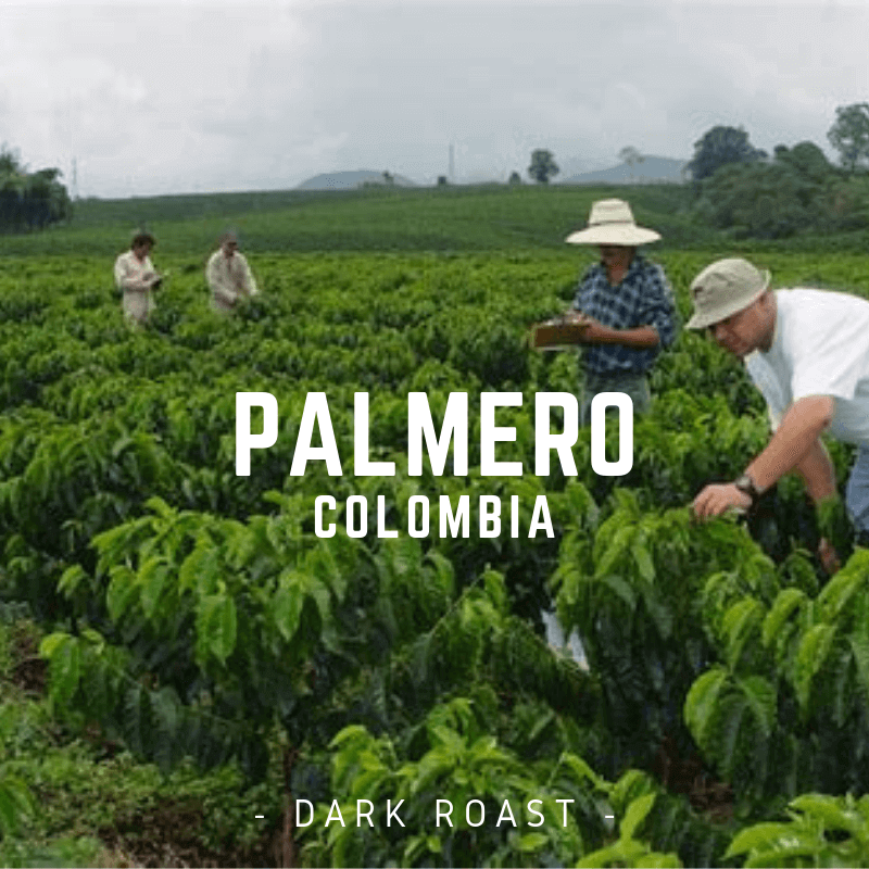 Colombia Caldas Palmera  -Dark Roast- 16oz