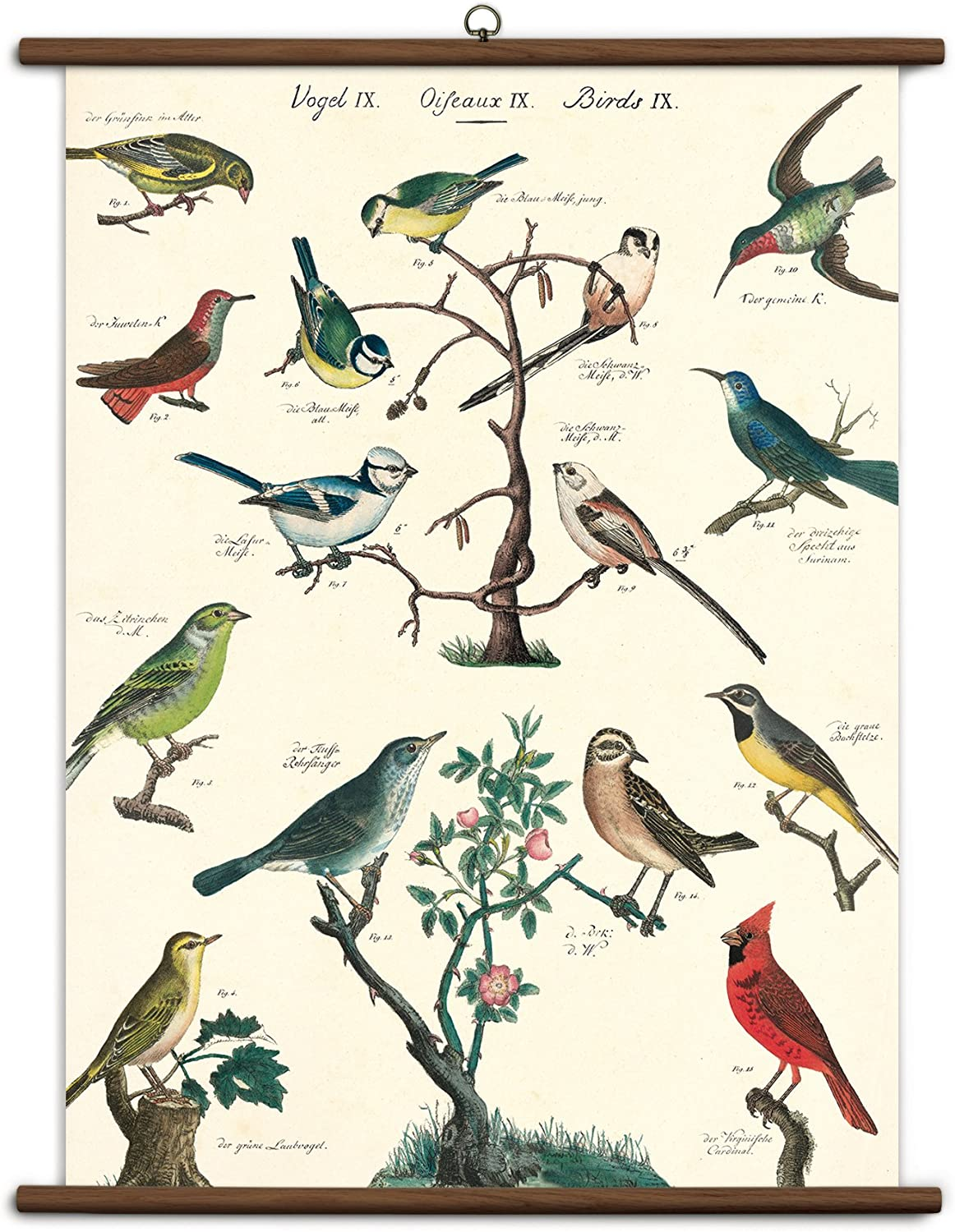 Birds Wall-Hanging School Chart *FOR PORCH PICK-UP ONLY* UNABLE TO SHIP