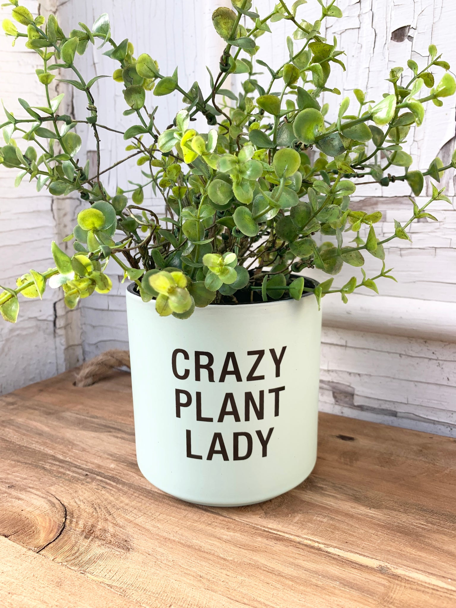 Crazy Plant Lady Planter - UNABLE TO SHIP